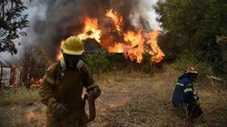 Week of wildfires wreaks havoc in Greece, force mass evacuations