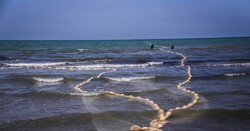 Caspian Sea level shrinks by 5-10cm on year