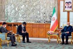 Japan's FM meets Iran's parliament speaker