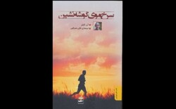 """Front cover of the Persian translation of Anne Tyler's novel """"Redhead by the Side of the Road""""."""