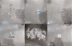 Iran police arrest suspected smugglers, seize treasures