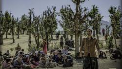 """""""Walnut Tree"""" by Mohammad-Hossein Mahdavian."""