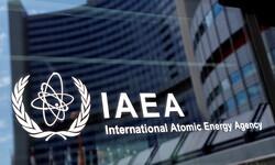 International Atomic Energy Agency (IAEA)