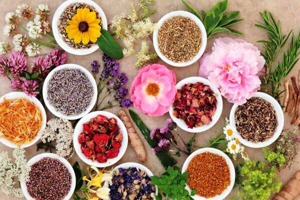 Guidelines prepared to use Iranian traditional medicine for COVID-19 treatment
