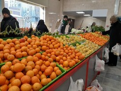 Exporting 2m tons of fruits on agenda