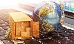 Special export support for knowledge-based firms